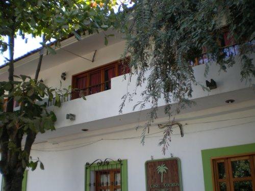 Mexico Guru Roofs Tile Cement Brick Lamina Palapa